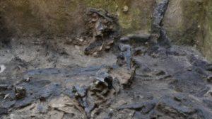 scavi metro C, resti di edificio con parti lignee